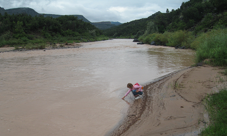 Photo of the Rio Grande River for Sierra Club Rio Grande Chapter website